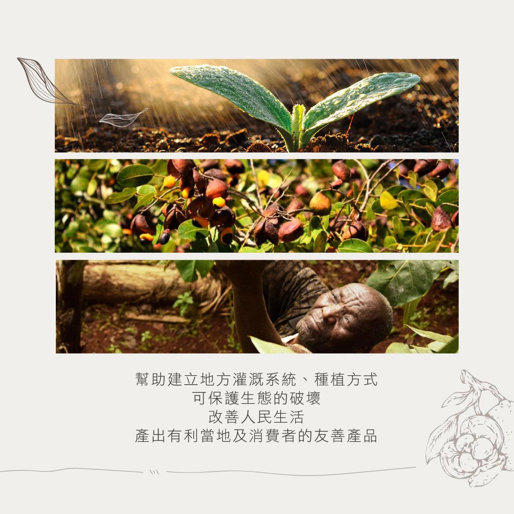 proimages/Maternity_Series/Lammue/S7512/S7512-撫紋妊EDM-7.jpg